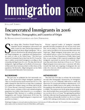Incarcerated Immigrants in 2016: Their Numbers, Demographics, and Countries of Origin